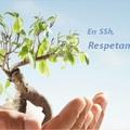 www.chimenasssh.es