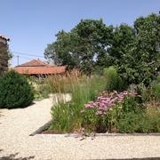 caminos y masa de gramíneas y vivaces en jardín privado