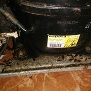 Control De Plagas Valencia, S.l