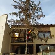 Distribuidores Husqvarna - Guillem Soler Arboricultura