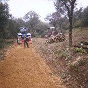 Empresas Jardineros Barcelona - J Deumal Jubany