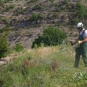 Empresas Jardineros Barcelona - Tot Jardi