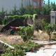 Empresas Paisajistas Madrid - Dream Gardens, Sl