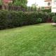 Empresas Reformas Sevilla - Jardineria alfi los palacios y villafranca