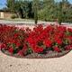 Empresas Reformas Illes Balears - Jardineria Galvez