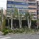 Empresas Reformas Alicante - Viveros Adam