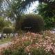 Jardineros, Pérgolas, Mantenimiento Piscinas