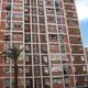 CAMELIAS, 2 Barcelona