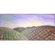 cielos del vino_350732