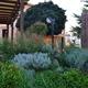 Rocalla de hierbas aromáticas y culinarias
