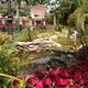 Estanque jardín restaurante