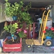 Traslado de plantas y enseres delicados