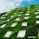 Jardín vertical en Colombia