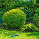 Construccio i manteniment de jardins