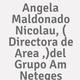 Logo Angela Maldonado Nicolau, ( Directora de Area ,)del Grupo Am Neteges_212749