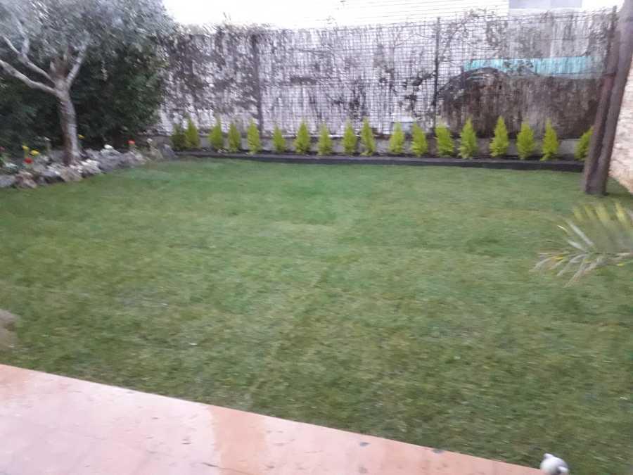 Foto puesta punto de jardin de chapuzas por horas - Punto jardin ...
