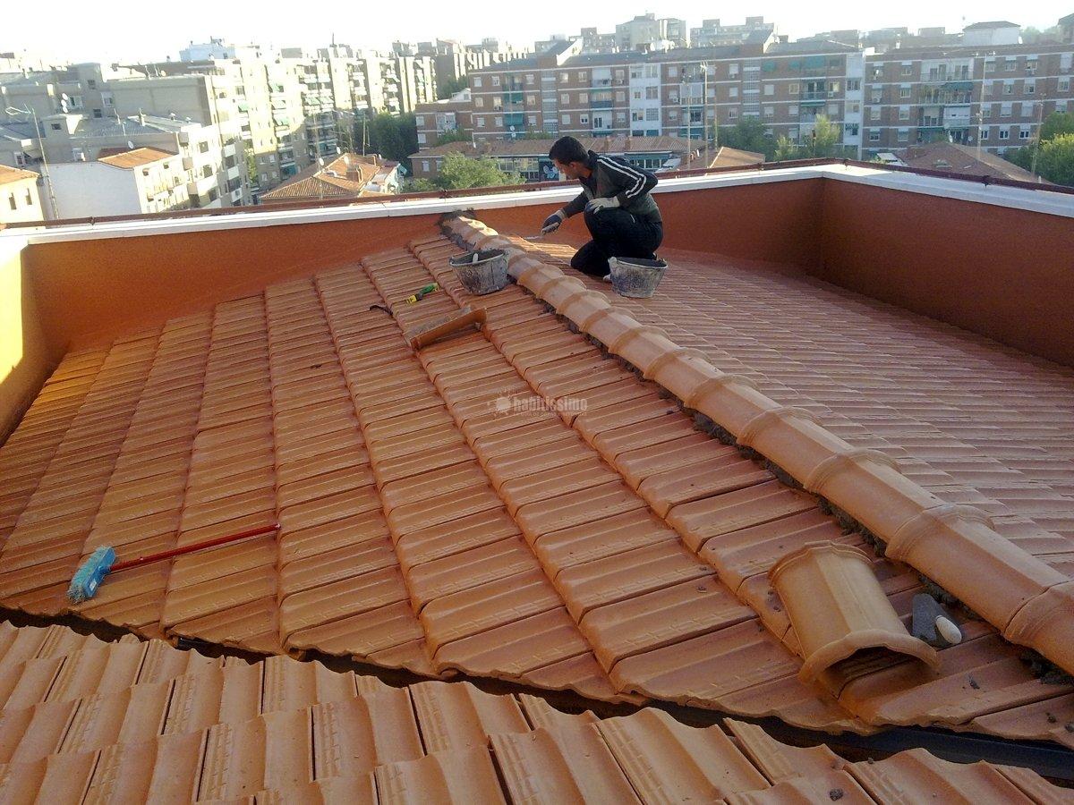 Foto tejados limpieza canalones impermeabilizaciones de for Tejados de madera barcelona