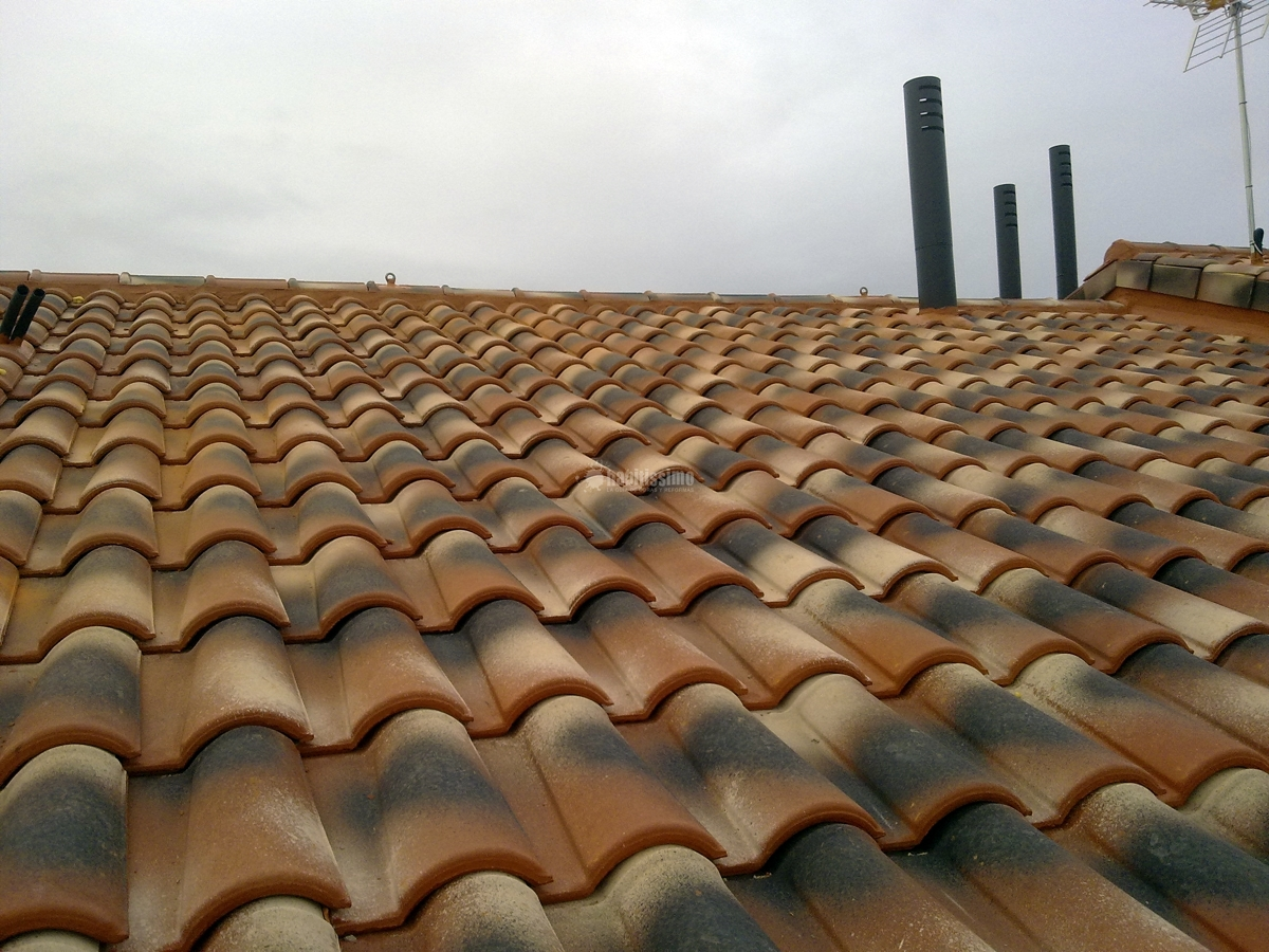 Foto tejados impermeabilizaciones cubiertas de for Tejados y fachadas vizcaya