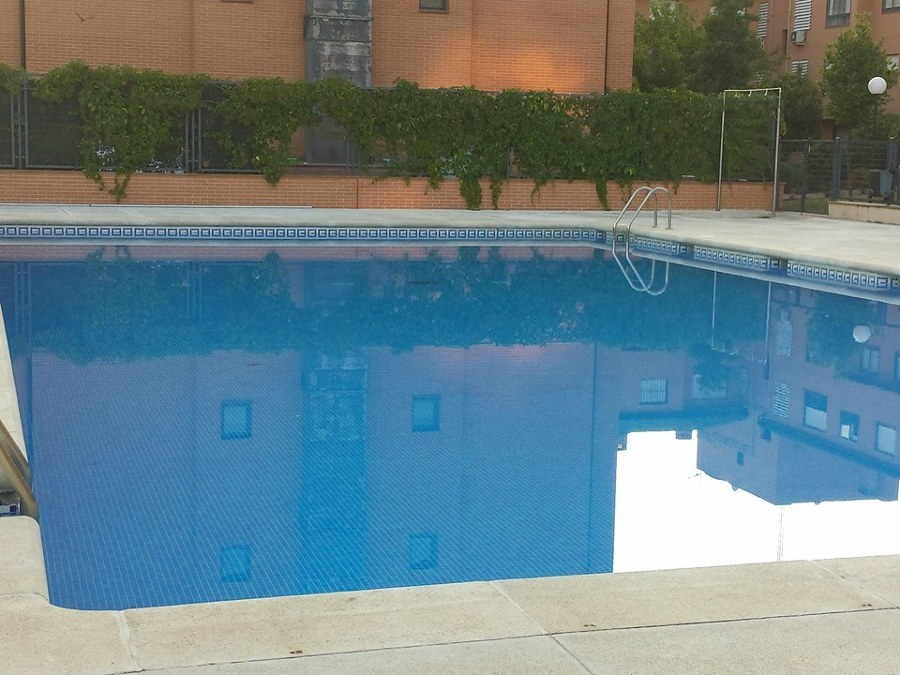 Foto mantenimiento de piscinas de argaservices 1022952 for Mantenimiento de piscinas