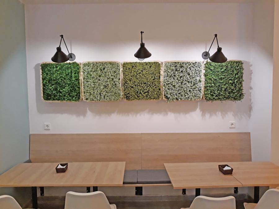 Módulos de plantas para decorar pared cafetería | Sincro