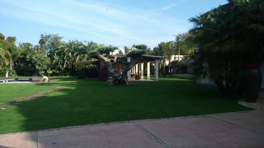 Foto colocacion de tepes de cesped natural gentileza for Jardineria a domicilio barcelona