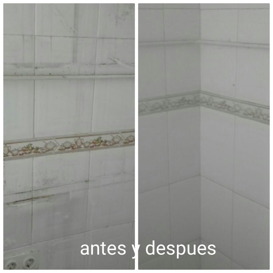 Foto limpieza azulejos de cocina de aidalba 1315897 - Limpiador de azulejos ...