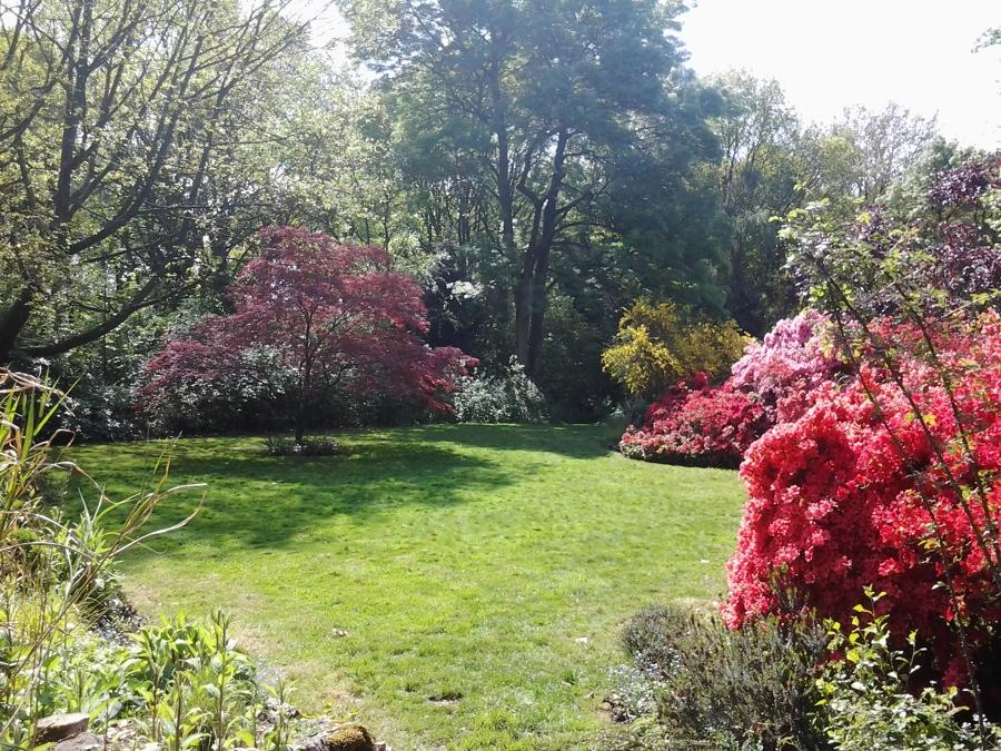 Jardines amplios