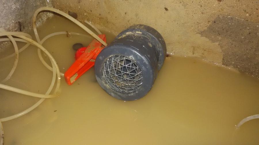 Foto rejilla anti roedores depuradora piscina de for Rejilla piscina