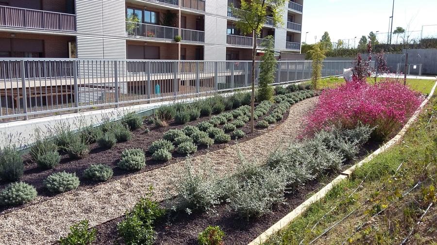 Foto comunidad tres cantos de plantea jardiner a y for Jardineria y paisajismo fotos