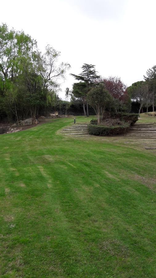 Mantenimiento jardin