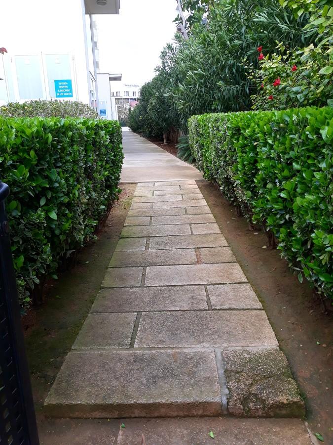 mantenimiento de jardín comunitario