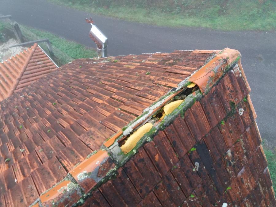 arreglo tejado