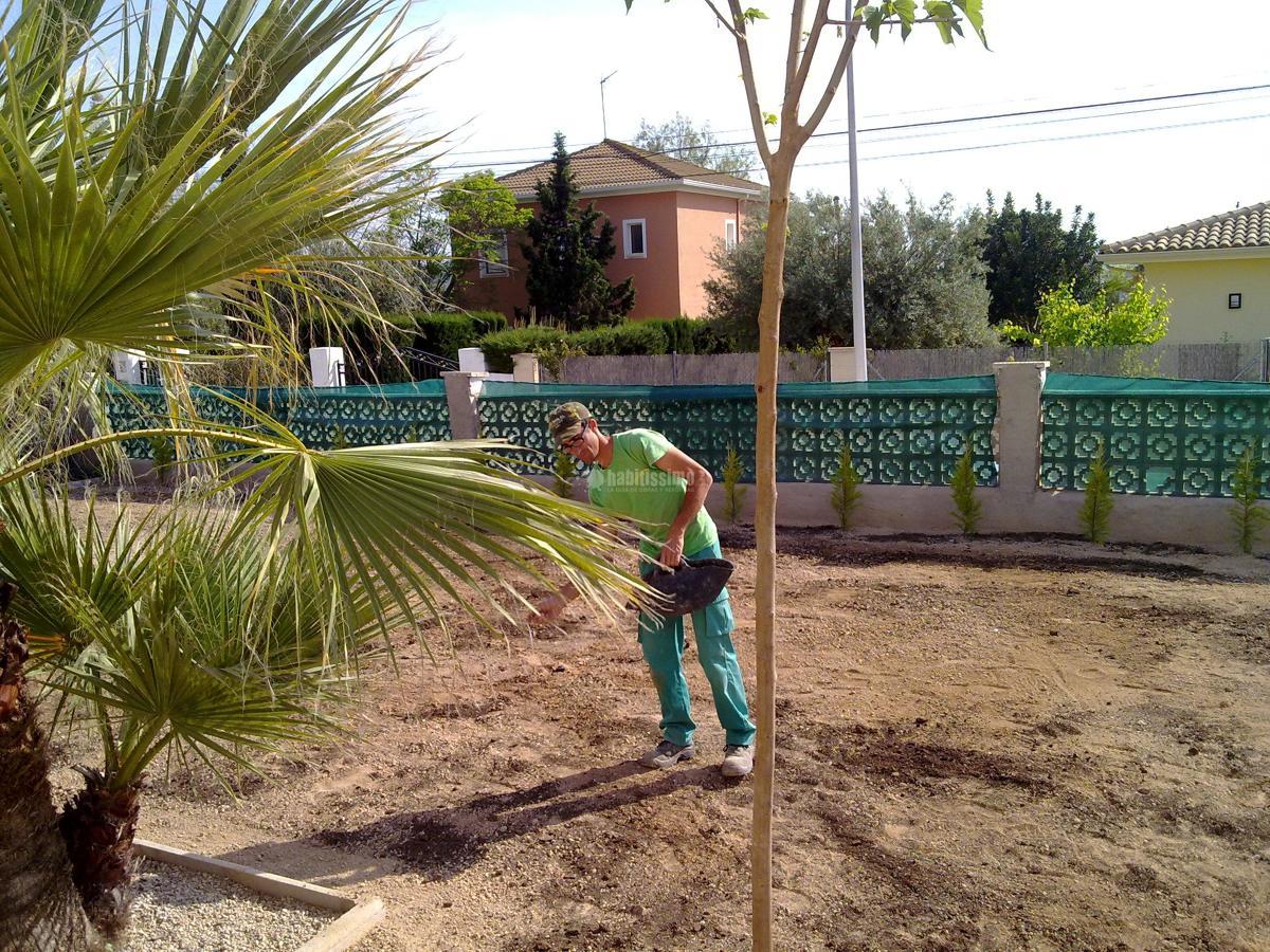 Foto jardineros de ilexserrata 63984 habitissimo - Jardineros tenerife ...