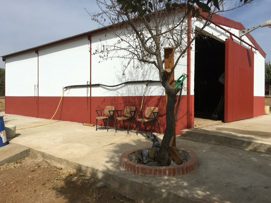 Restauración y pintado de fachada!