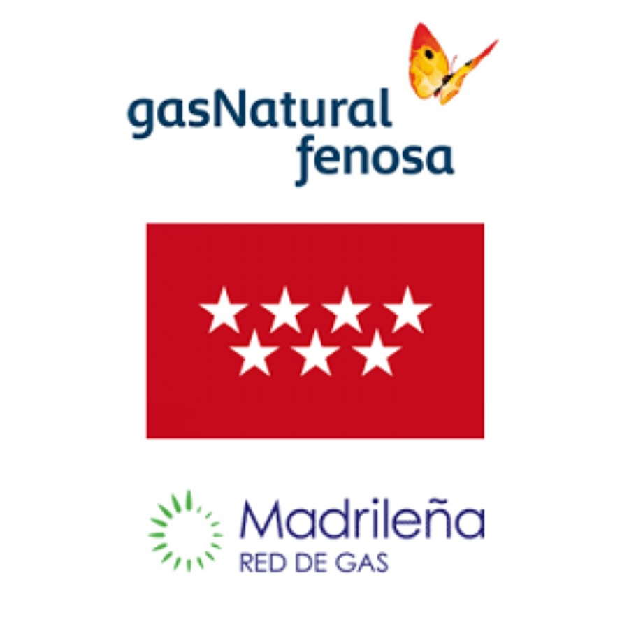 Empresa colaboradora de Gas Natural Fenosa y Madrileña Red de Gas