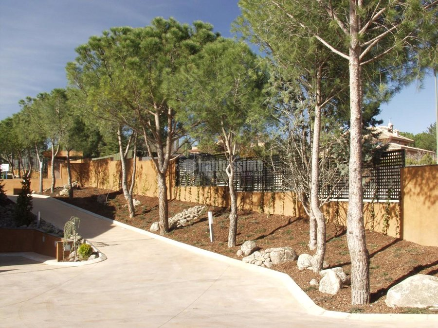 Foto paisajistas art culos decoraci n dise o jardines for Articulos decoracion jardin