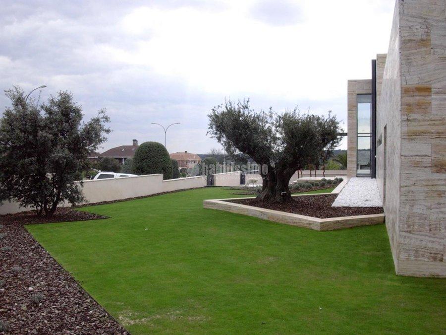 Paisajistas, Mantenimiento Jardines, Podas