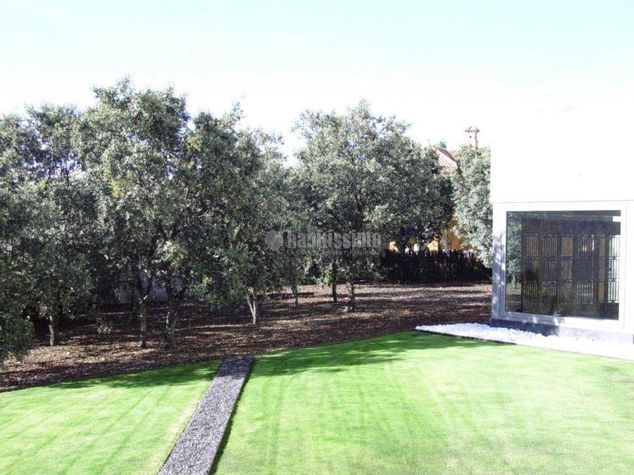 Foto paisajistas mantenimiento jardines art culos for Articulos decoracion jardin