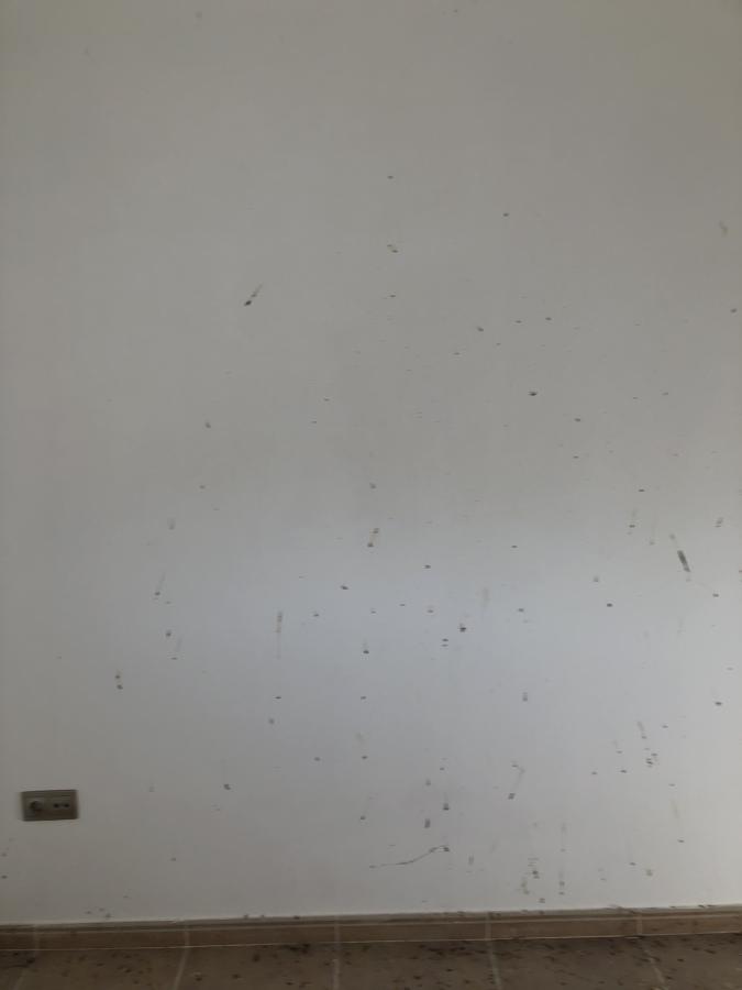 Limpieza y pintado