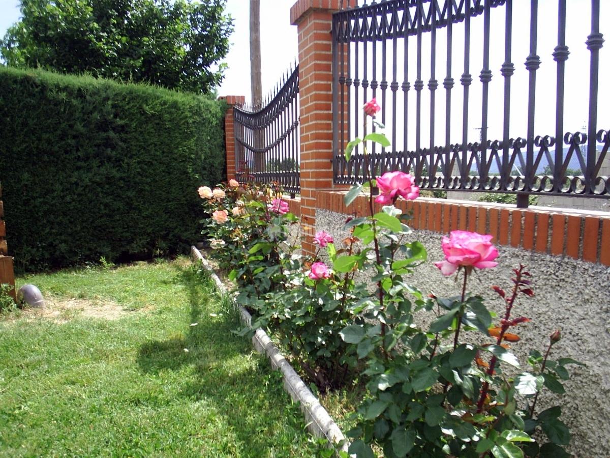 Foto poda de rosales de alberto l pez 91716 habitissimo for Jardines de alberto granada