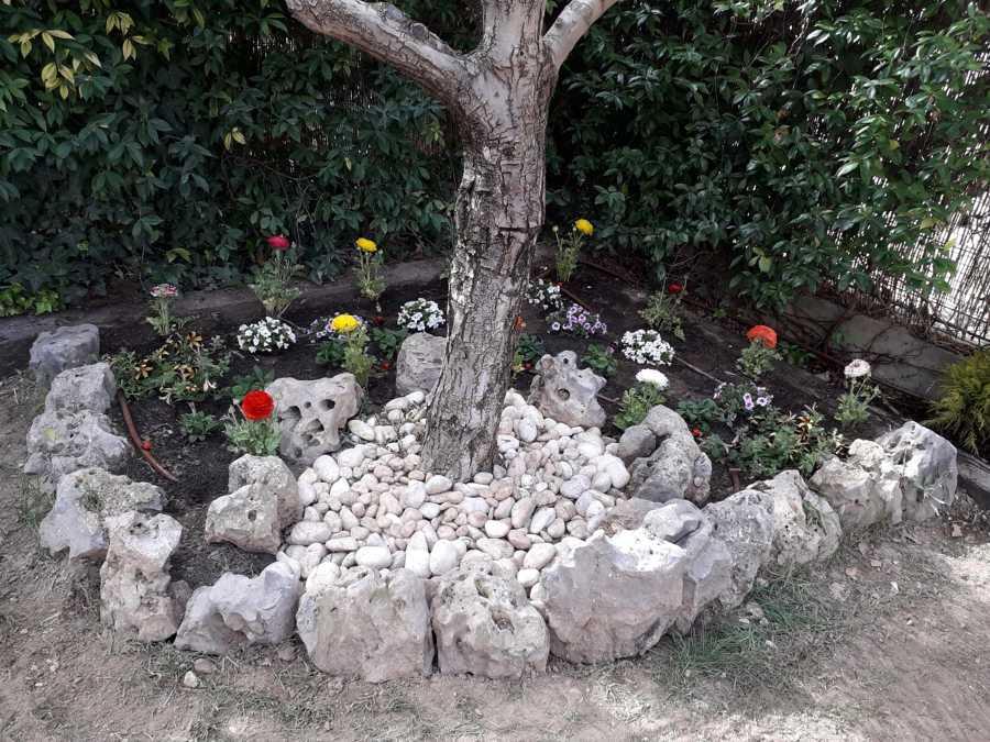 foto preparaci n de jardin de chapuzas por horas 1761128