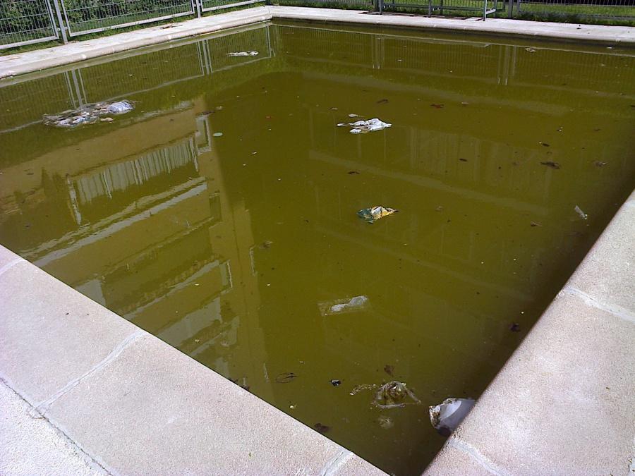 Foto agua verde piscina infantil comunidad de aqualica - Agua de piscina verde ...