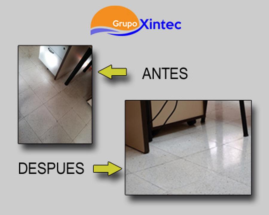 Grupo Xintec