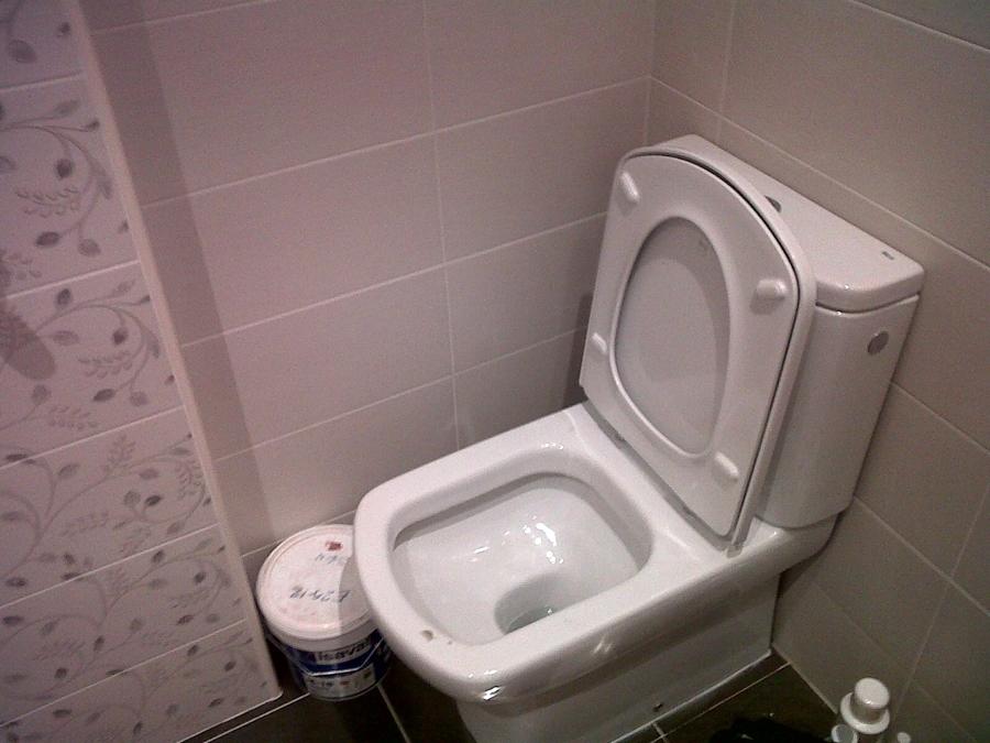 Juego De Baño Dama Senso:baño2,personalizado con inodoro damas senso compact