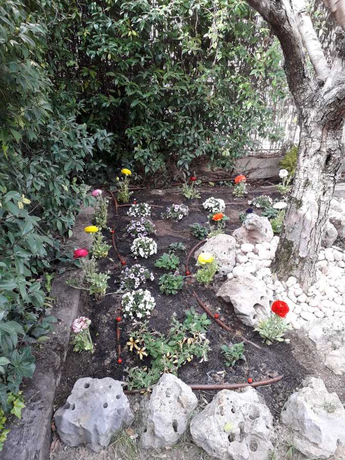 Foto puesta punto jardin de chapuzas por horas 1761130 - Punto jardin ...