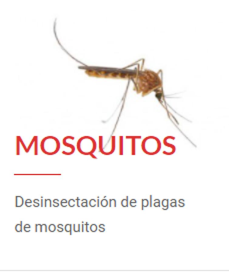 Desinsectación de Mosquitos