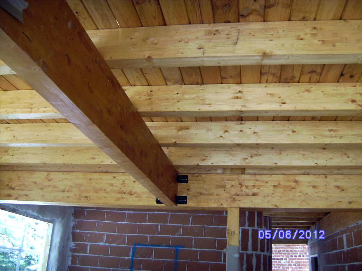 Foto casa ecologica vigas de madera de nita nelu for Imagenes de tejados de madera