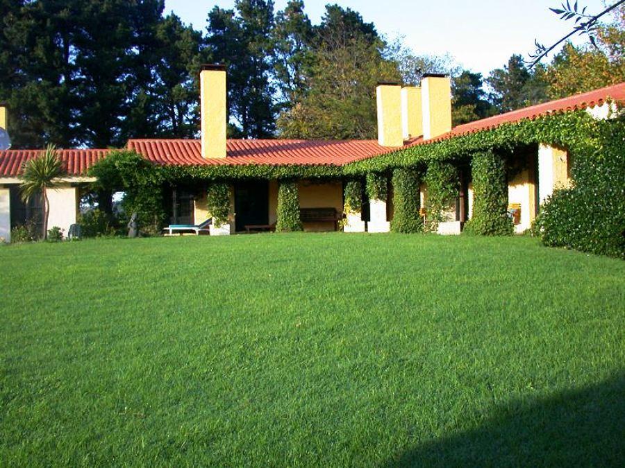 Mantenimiento jardín Villaviciosa de Odón