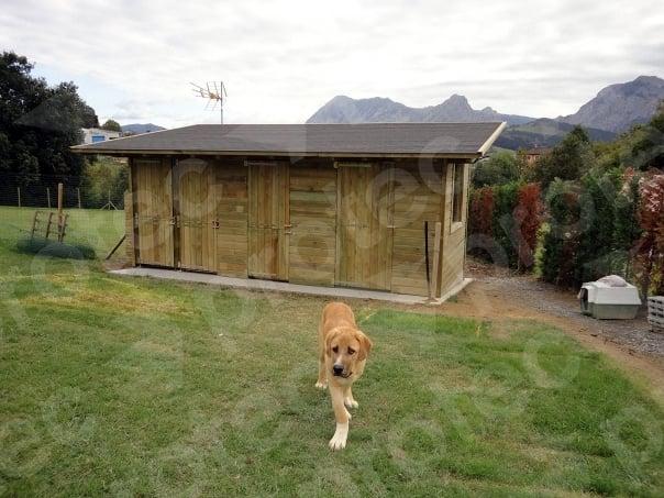 Foto casetas a medida para perros de protec 188667 - Casetas para perro ...