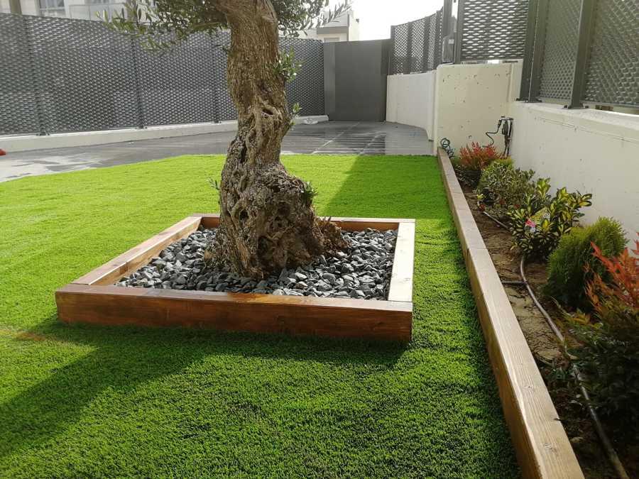 Decoración completa de jardín de entrada